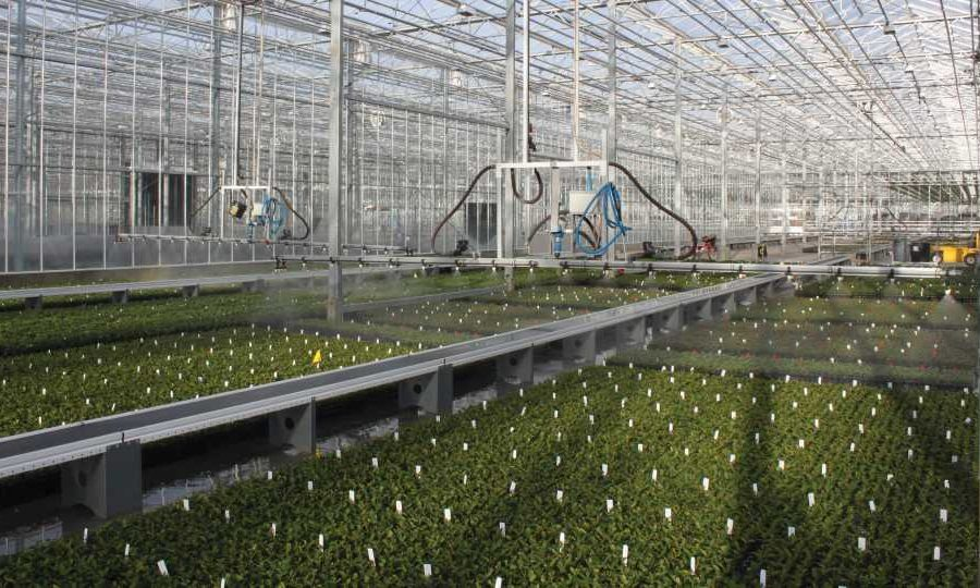 The State of the Greenhouse Industry in Two Words: Cautious Optimism
