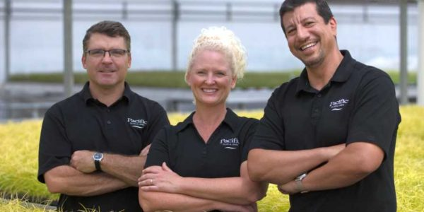 Pacific Plug & Liner Discovers Possibilities in Perennials