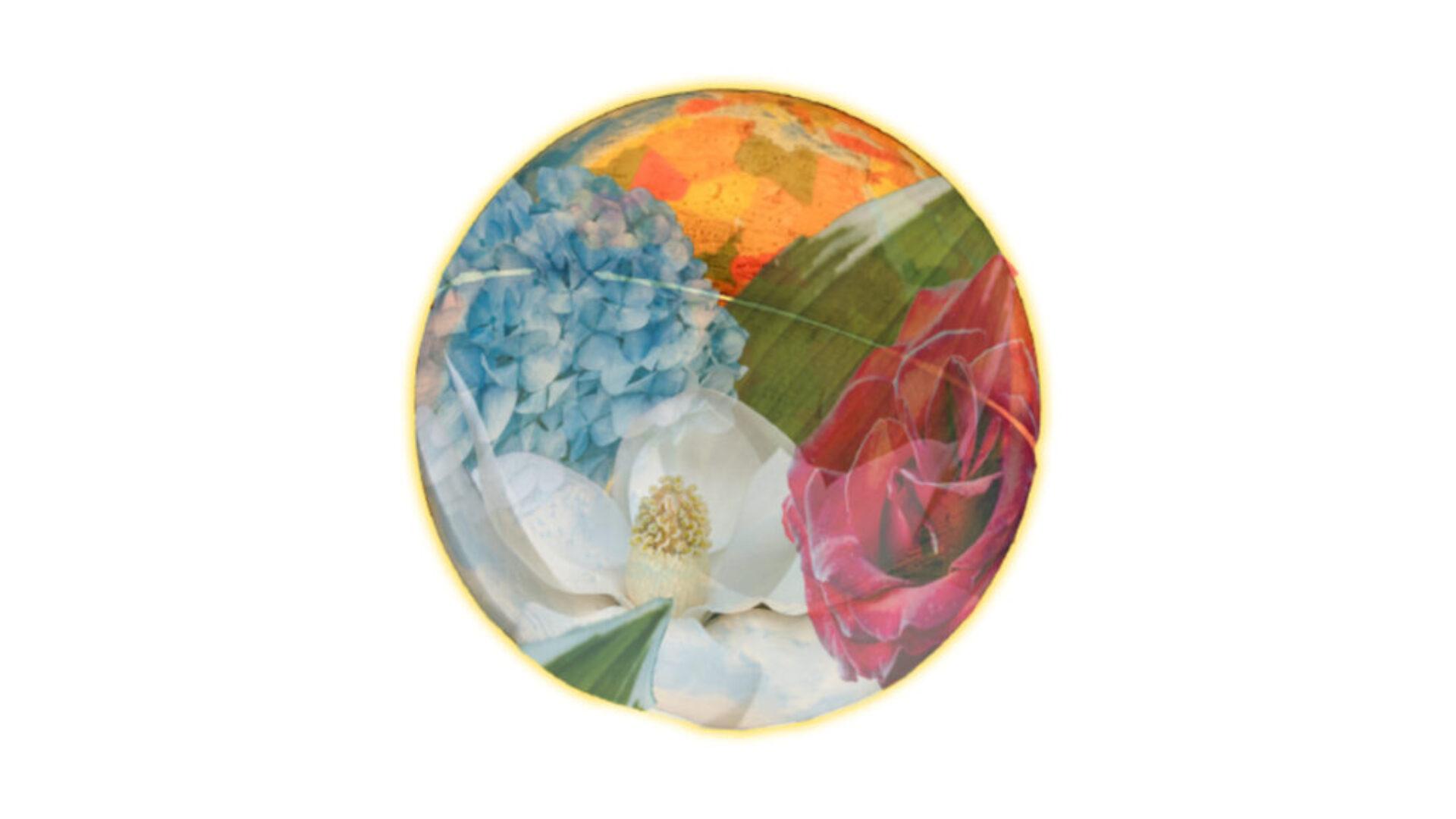 Cassies Flower Blog