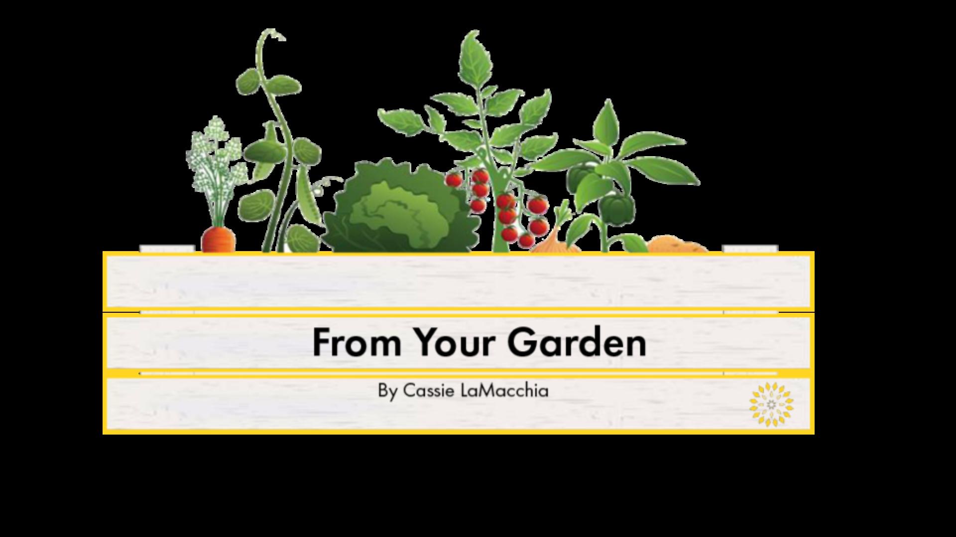 Garden Cover - CL -01